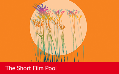The Short Film Pool at Itinérances Film Festival