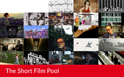 New : curated programmes for the Short Film Pool